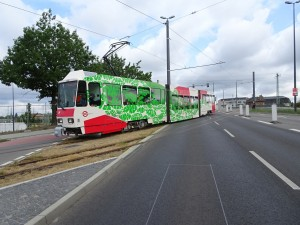 2019-08-16 Bahnhofsberg Einfahrt erste Bahn (20)