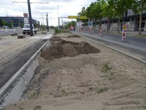 2019-08-16 DIT Vetschauer Straße (3)