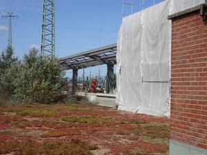 2019-09-06 DIT Bahnsteig 1 (5)