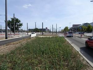 2019-09-06 DIT Vetschauer Straße (1)