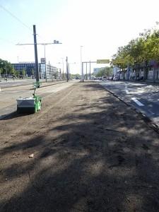 2019-09-26 KGO Vetschauer Straße (5)