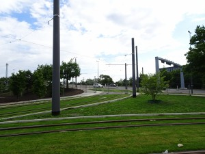 Vorplatz Süd (14)